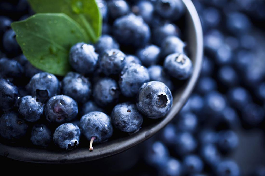 Sa Fruit Journal June July 2021 Blueberry Exports Main