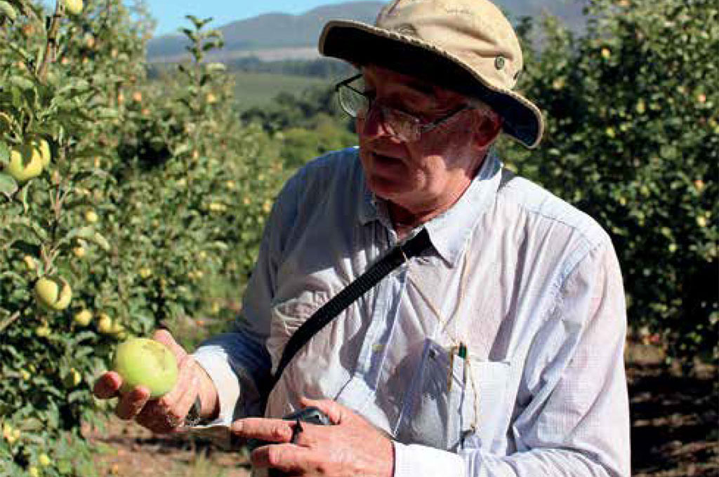 Sa Fruit Journal June July 2021 Integrated Pest Management Web Main