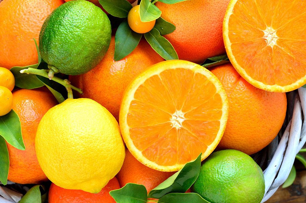 Sa Fruit Journal Aug Sept 2021 Citrus