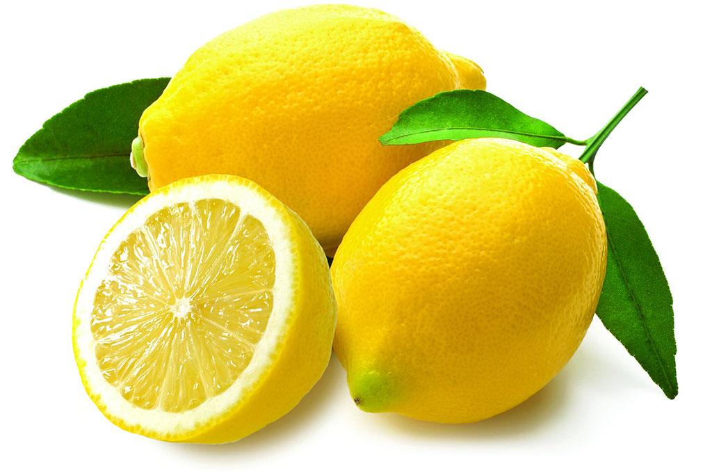 Sa Fruit Journal Aug Sept 2021 Lemon