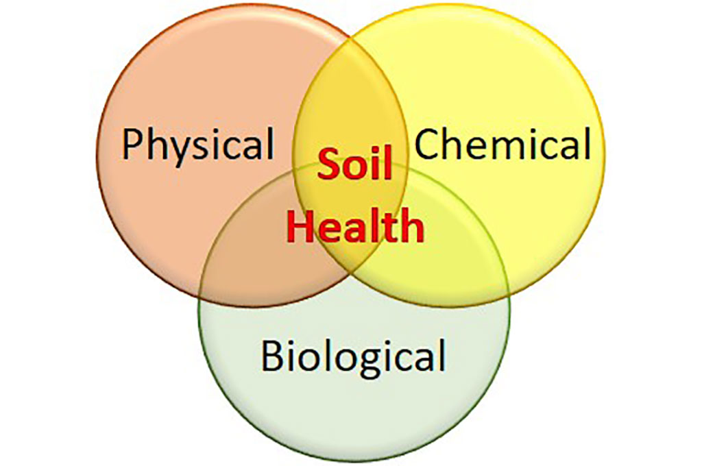 Sa Fruit Journal Aug Sept 2021 Soil Health